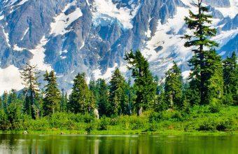 Washington Lake Mountains Trees Landscape 1440x2880 340x220