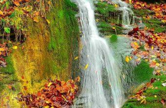 Waterfall Autumn Lovely Stream 1440x2880 340x220