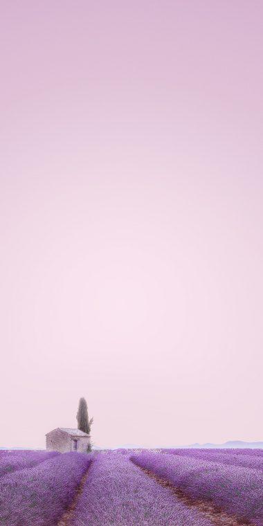 ZTE Blade V9 Stock Wallpaper 04 1080x2160 380x760