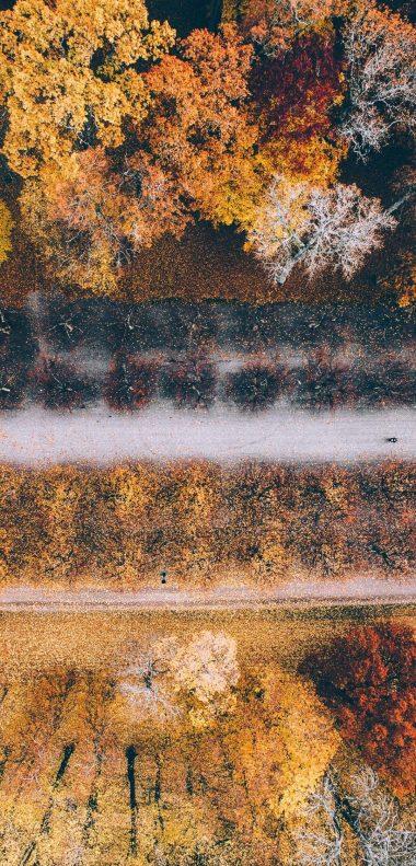 1080x2248 Wallpaper 057 380x791