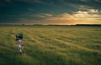 A Bicycle On An Empty Green Field Wallpaper 800x480 340x220