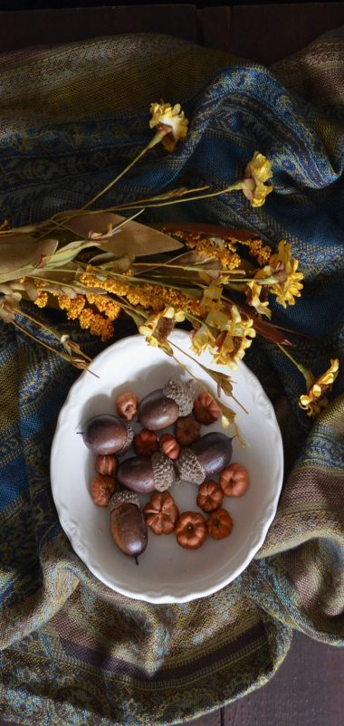 Acorns Plate Flowers Cloth Wallpaper 720x1520 380x802