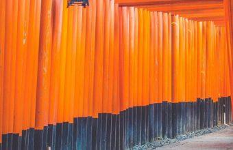 Architecture Art Bright Color Wallpaper 720x1520 340x220