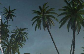 Assassins Creed 4 Black Flag Wallpaper 720x1520 340x220