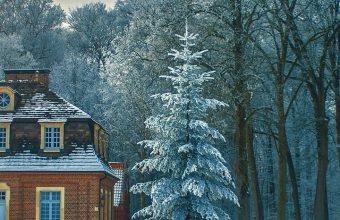 Beautiful Cold Fog Freezing Frost Wallpaper 720x1520 340x220
