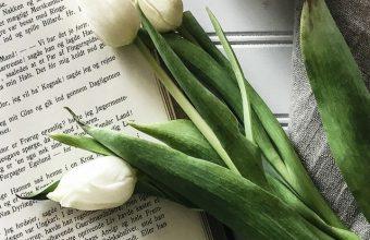 Book Tulips Coffee Wallpaper 720x1520 340x220