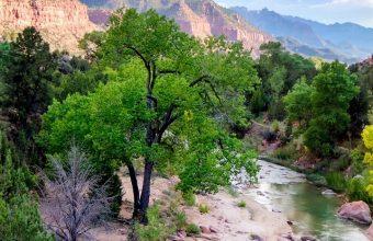 Canyon USA River Nationalpark Wallpaper 720x1520 340x220
