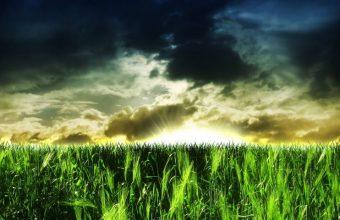 Clouds Above A Green Field Wallpaper 800x480 340x220