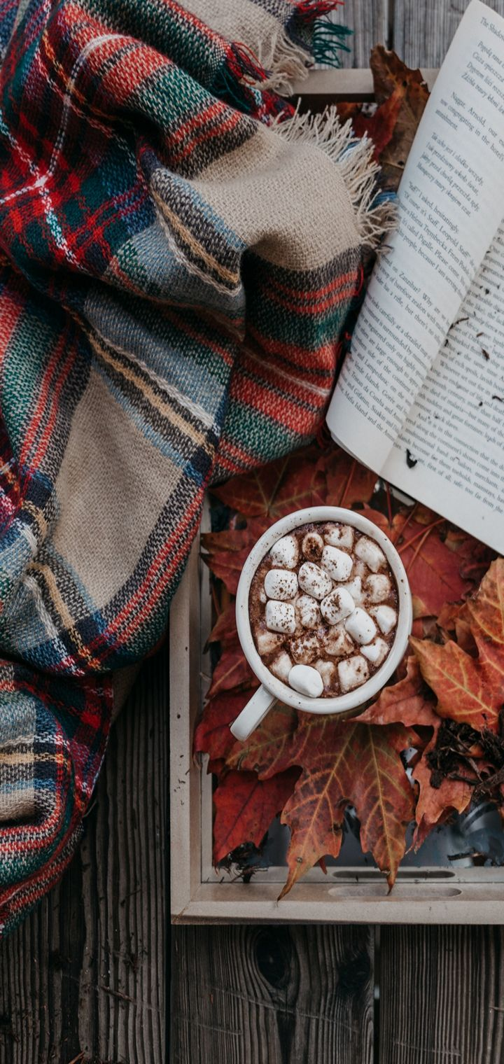 Cocoa Marshmallow Autumn Plaid Book Wallpaper