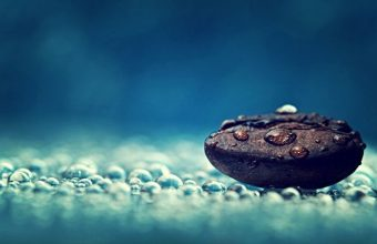 Coffee Bean And Water Drops Wallpaper 800x480 340x220