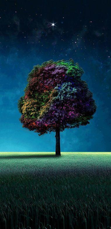 Colorful Tree Wallpaper 720x1480 380x781