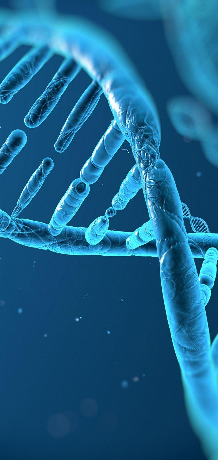DNA 3 D Structure Molecule Wallpaper 720x1520