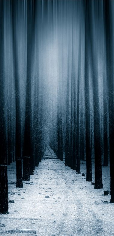 Dark Forest Woods Snow Winter 8k Vv Wallpaper 720x1480 380x781