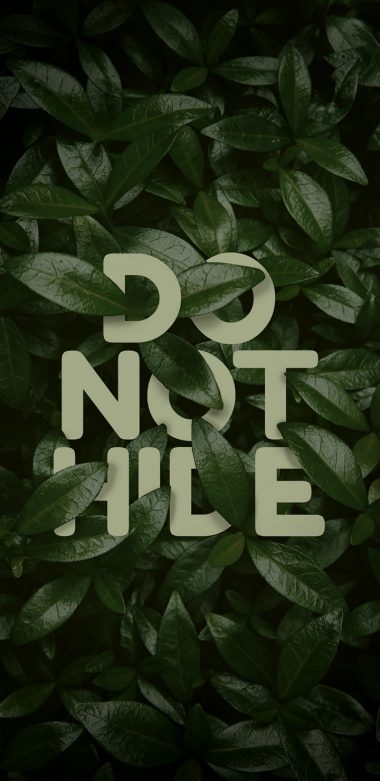 Do Not Hide Wallpaper 720x1480 380x781