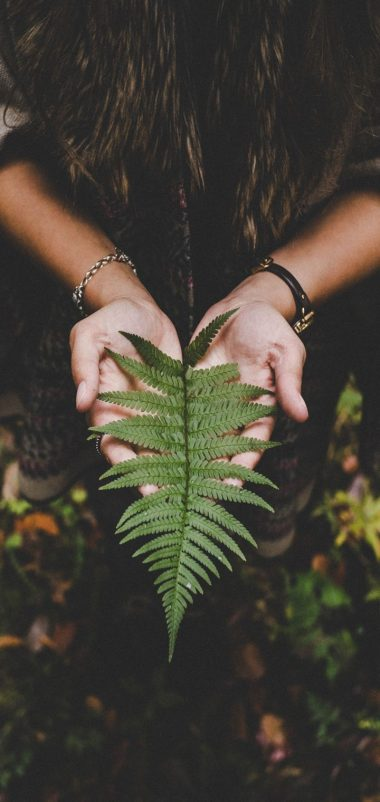 Fern Leaf Hands Palms Autumn Wallpaper 720x1520 380x802