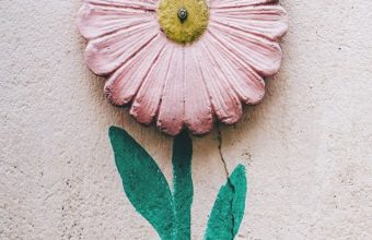 Flower Wall Art Wallpaper 720x1520 340x220