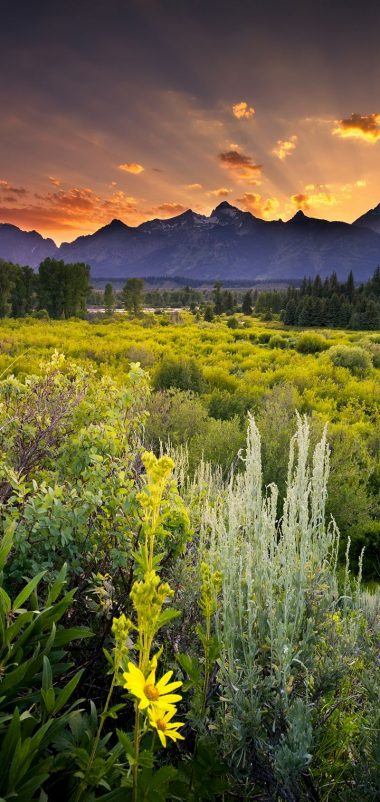 Grand Teton National Park Sunset Clouds Wallpaper 720x1520 380x802