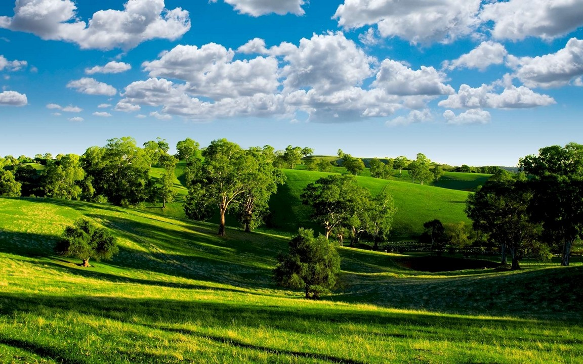 Green Landscape With Trees Wallpaper