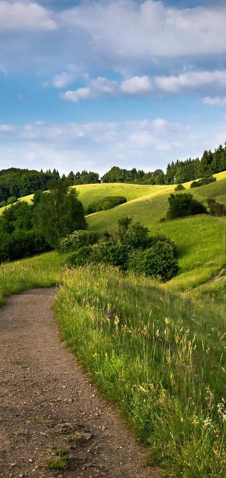 Hills Road Trees Landscape Wallpaper 720x1520