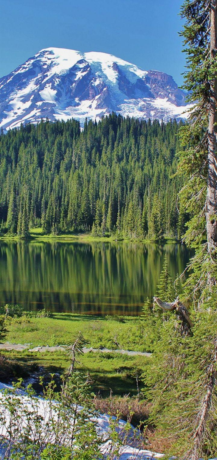 Lake Mountains Trees Landscape Wallpaper 720x1520