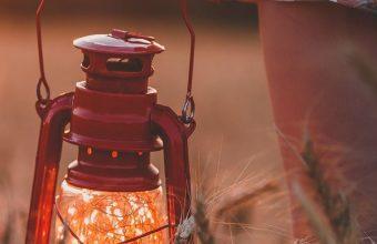 Lamp Field Grass Hand Wallpaper 720x1520 340x220