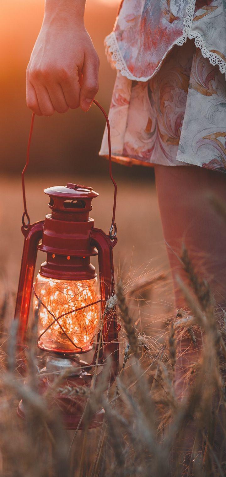 Lamp Field Grass Hand Wallpaper 720x1520