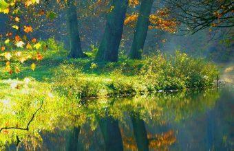 Landscape Nature Autumn Forest Wallpaper 720x1520 340x220