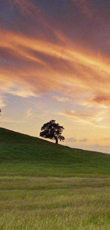 Landscape Sunset Wallpaper 1080x2248 380x791