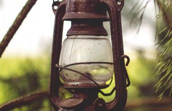 Lantern Lamp Branches Wallpaper 720x1520 340x220