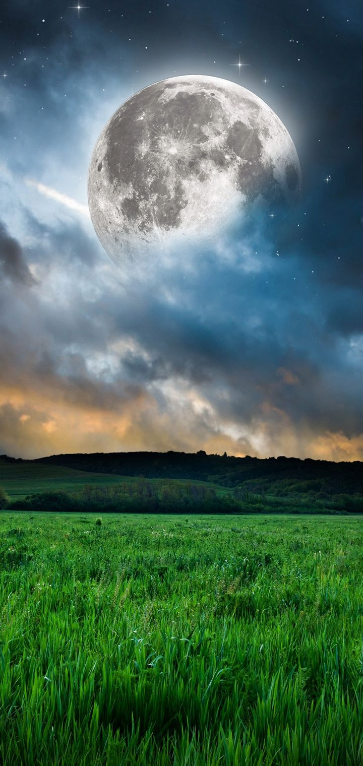 Moon Grass Mood Night Stars Wallpaper 720x1520