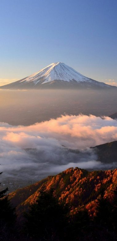 Mount Fuji Hd Qhd Wallpaper 720x1480 380x781