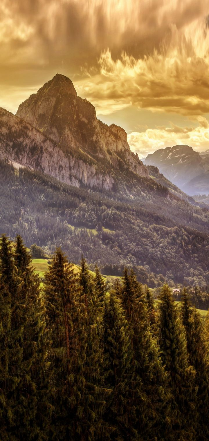 Mountains Forests Scenery Wallpaper 720x1520