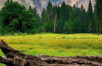 Mountains Trees Landscape Wallpaper 720x1520 340x220