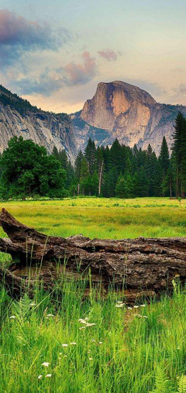 Mountains Trees Landscape Wallpaper 720x1520 380x802
