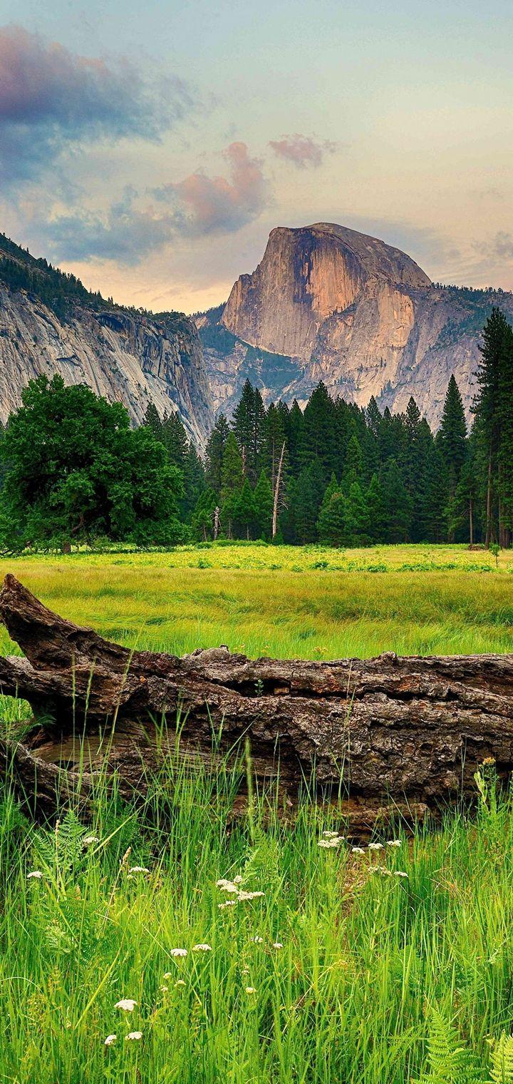 Mountains Trees Landscape Wallpaper 720x1520
