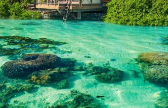 Ocean Tropical Sunshine Paradise Wallpaper 720x1520 340x220