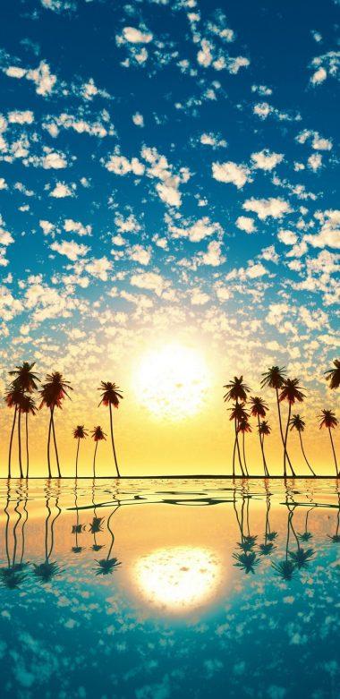 Palm Trees Reflection Sunset Cd Wallpaper 720x1480 380x781
