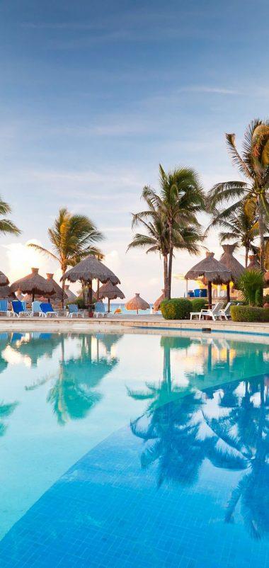 Palm Trees Resort Nature Tropical Pool Wallpaper 720x1520 380x802