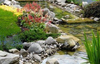 Parks Stones Stream Grass Nature Wallpaper 720x1520 340x220