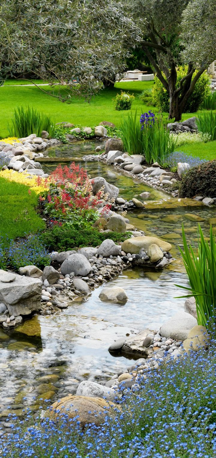 Parks Stones Stream Grass Nature Wallpaper 720x1520