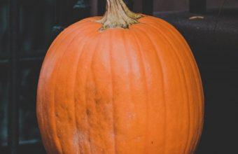Pumpkin Autumn Harvest Wallpaper 720x1520 340x220
