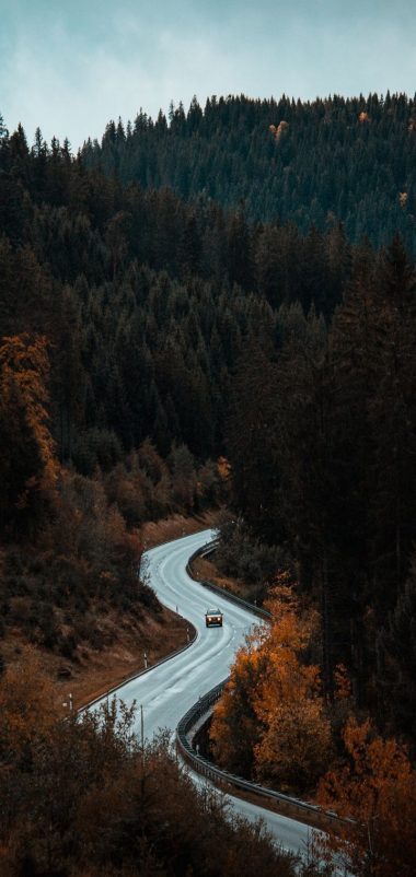 Road Movement Forest Trees Wallpaper 720x1520 380x802