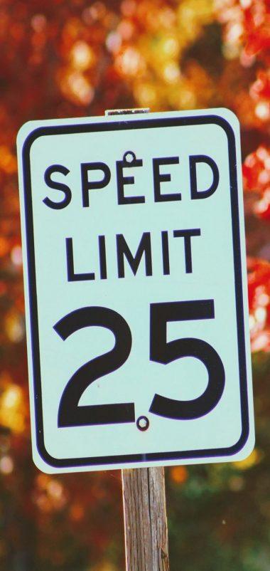 Sign Speed Restriction Autumn Wallpaper 720x1520 380x802