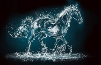 Spray Horse Rendering Animal Wallpaper 960x600 340x220