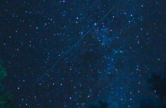 Starry Sky Stars Night Trees Wallpaper 720x1520 340x220