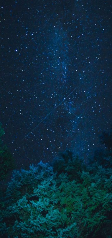 Starry Sky Stars Night Trees Wallpaper 720x1520 380x802