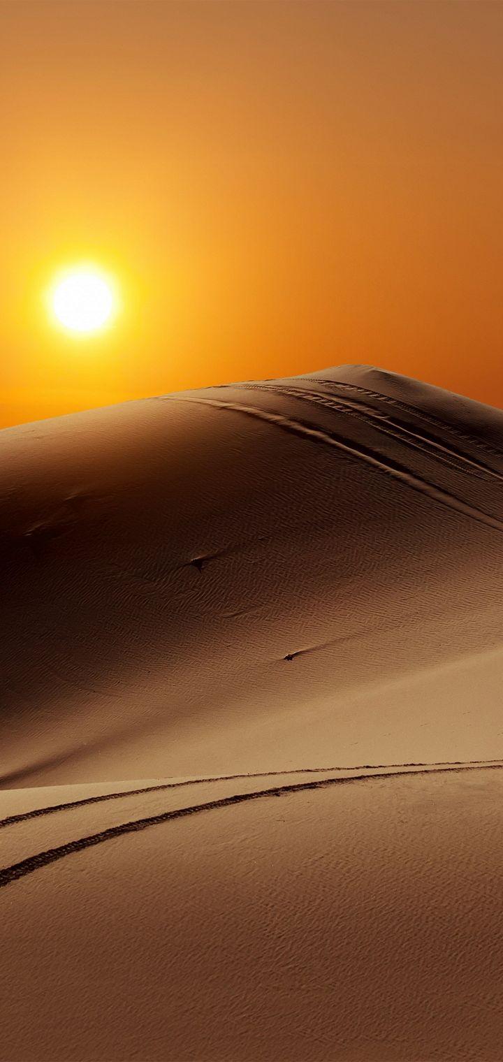 Sun People Desert Camel Wallpaper 720x1520