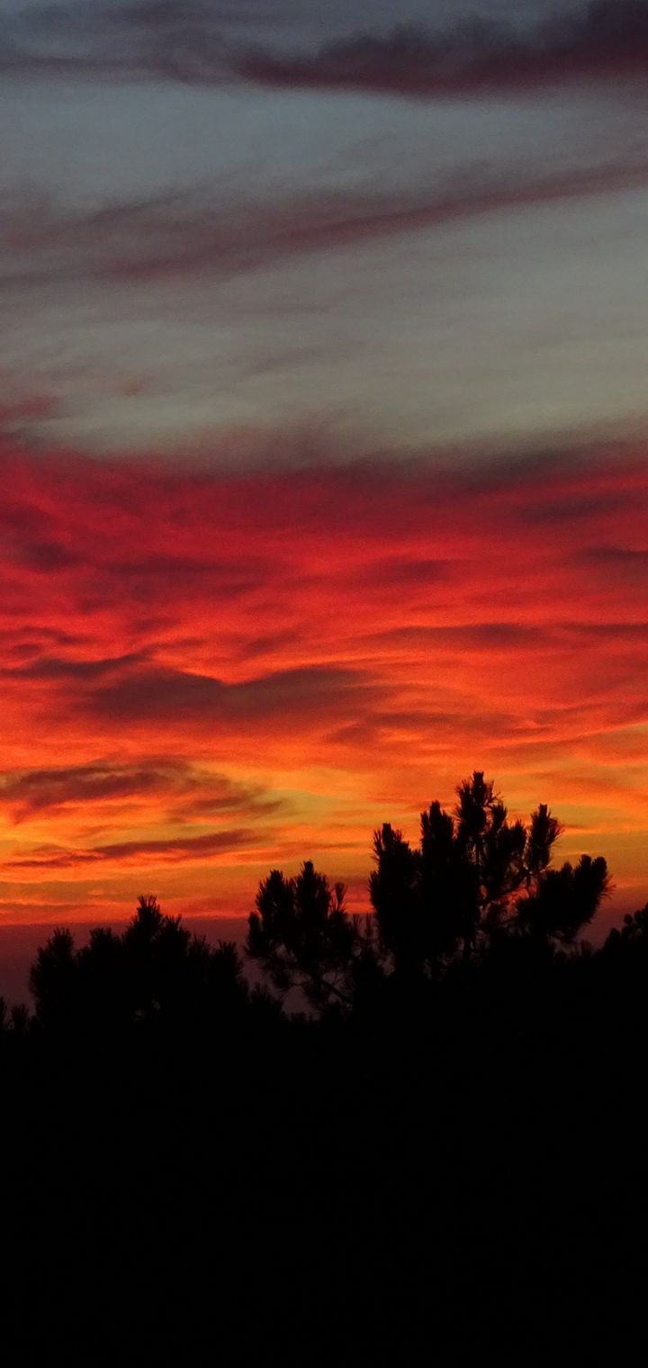 Sunset Trees Sky Clouds Wallpaper 720x1520