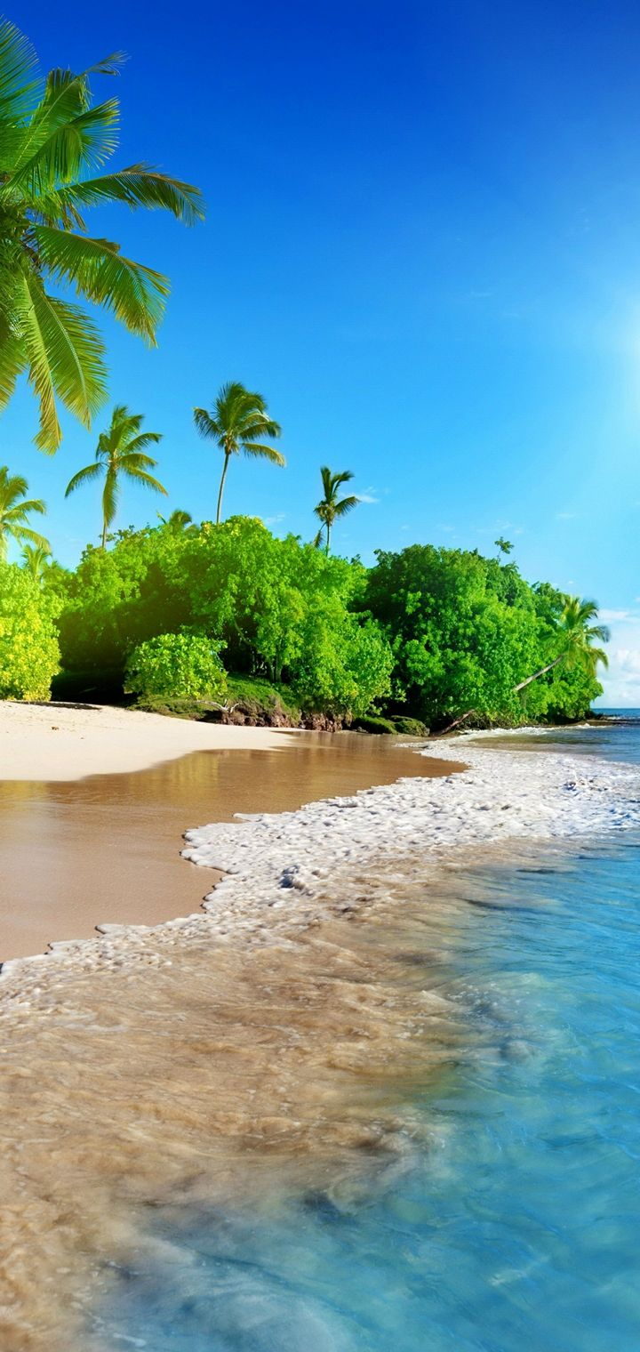 Sunshine Beach Coast Tropical Paradise Wallpaper 720x1520