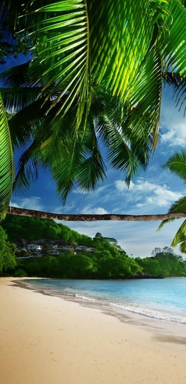 Tropical Beach Ultra HD Wallpaper 720x1480 380x781